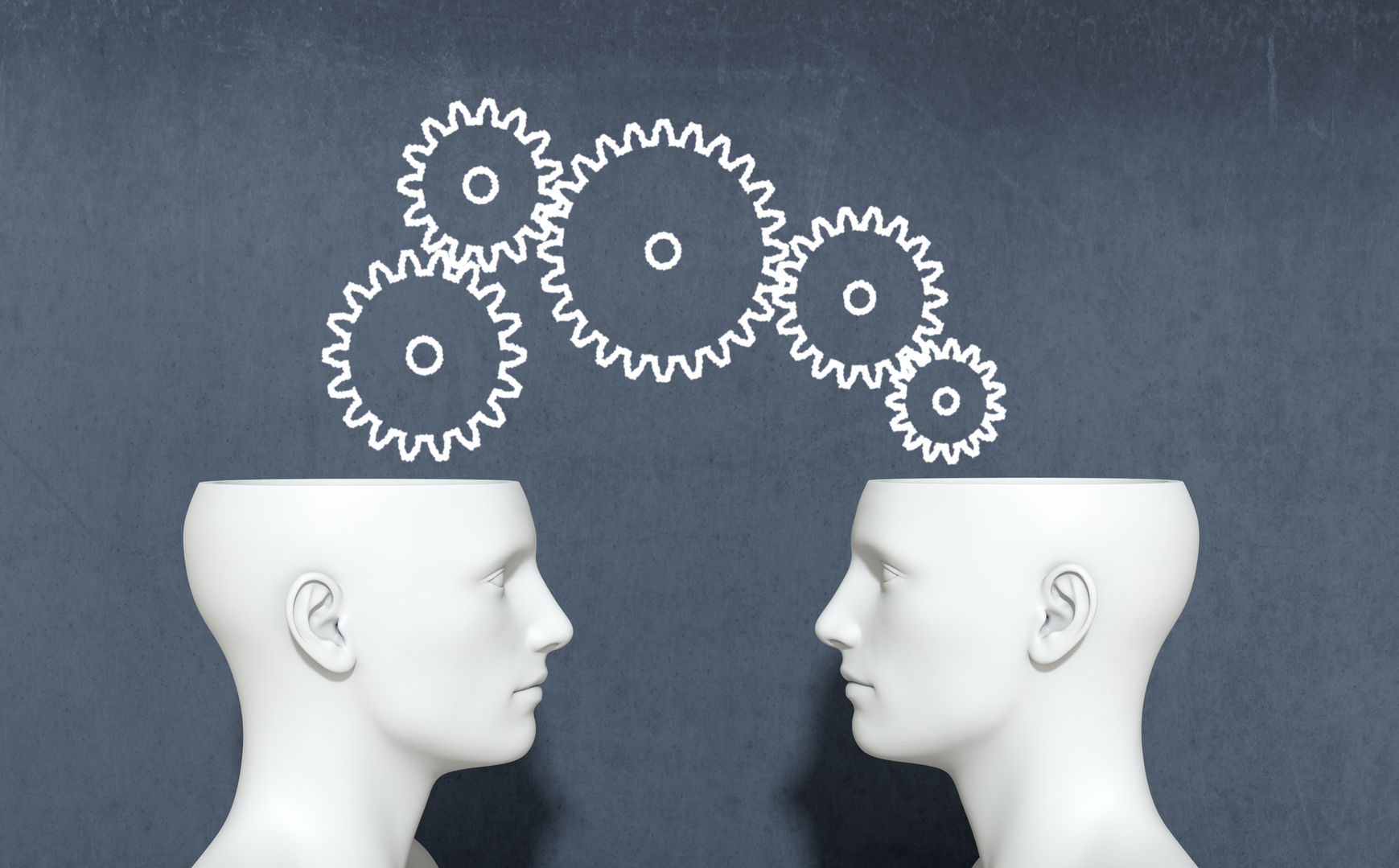 37315843 - two heads with gears, concept of information sharing and collaboration (3d render)