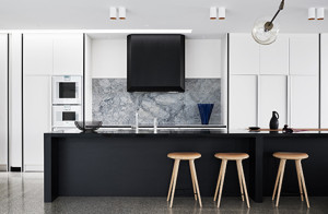 Designer-of-the-year_Fiona-Lynch_Williamstown-Residence_Photo-Dan-Hocking_458