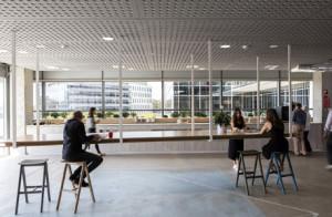 BVN-Wellness-office_Frasers