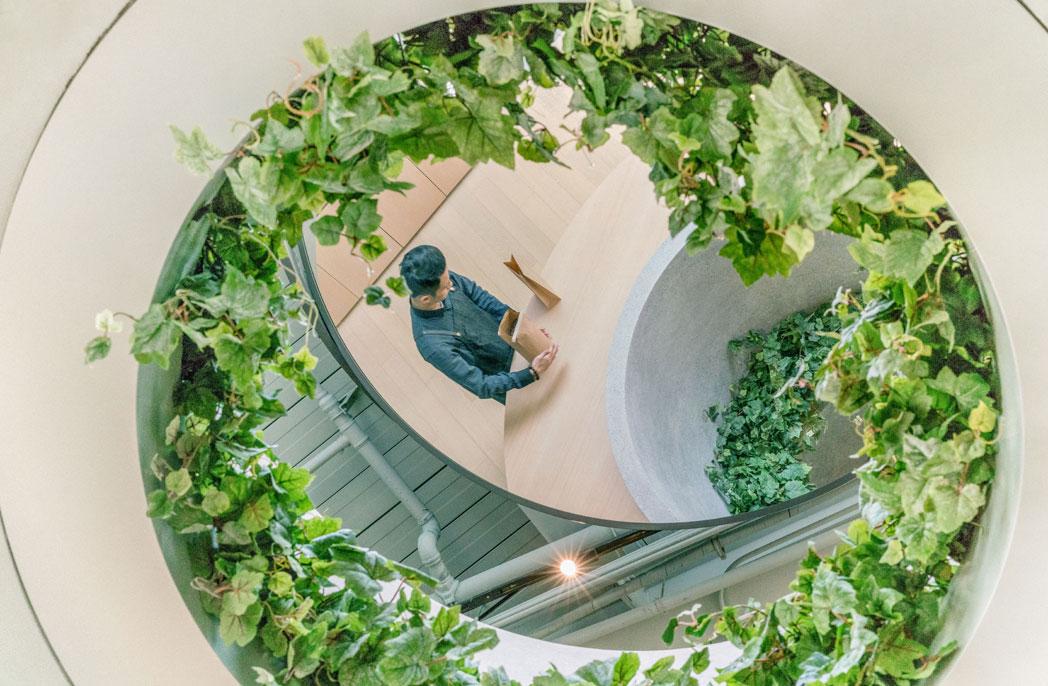 Biophilic-design-plants