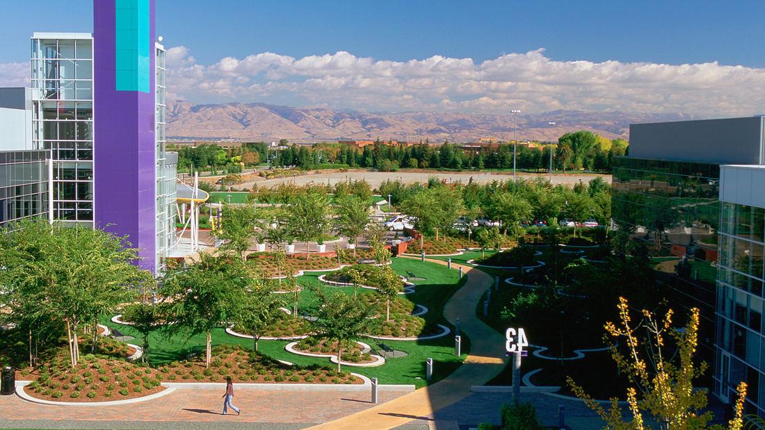 landscape architecture verde