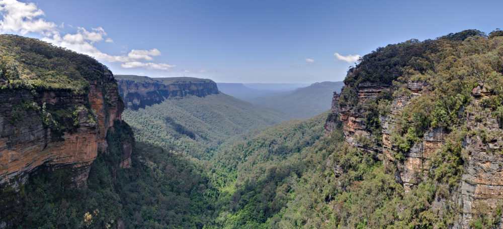 Blue Mountains, NSW. hunter