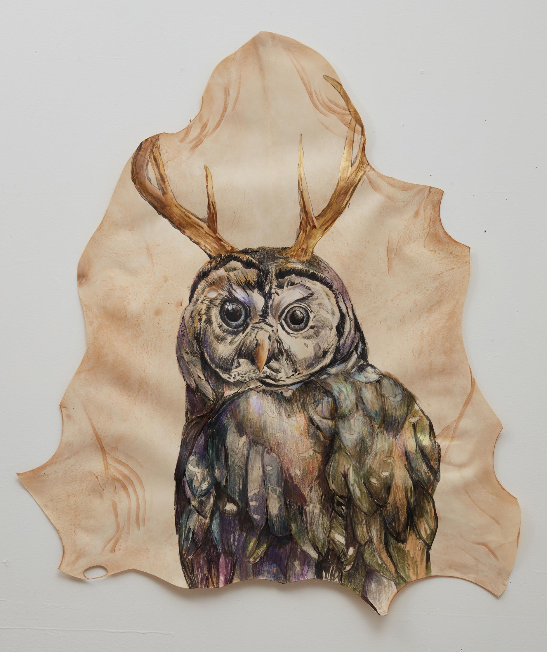 Athena's child, watercolour and pencil on goat skin, 80x92cm framed