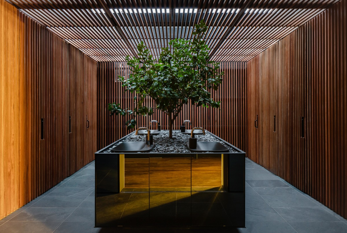Lemon tree in the showroom