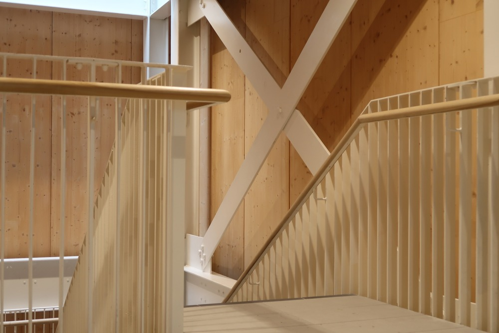 Exposed structure and cross laminated timber provides a warm an honest interior